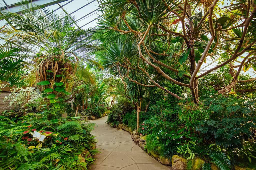 inside centennial park conservatory garden