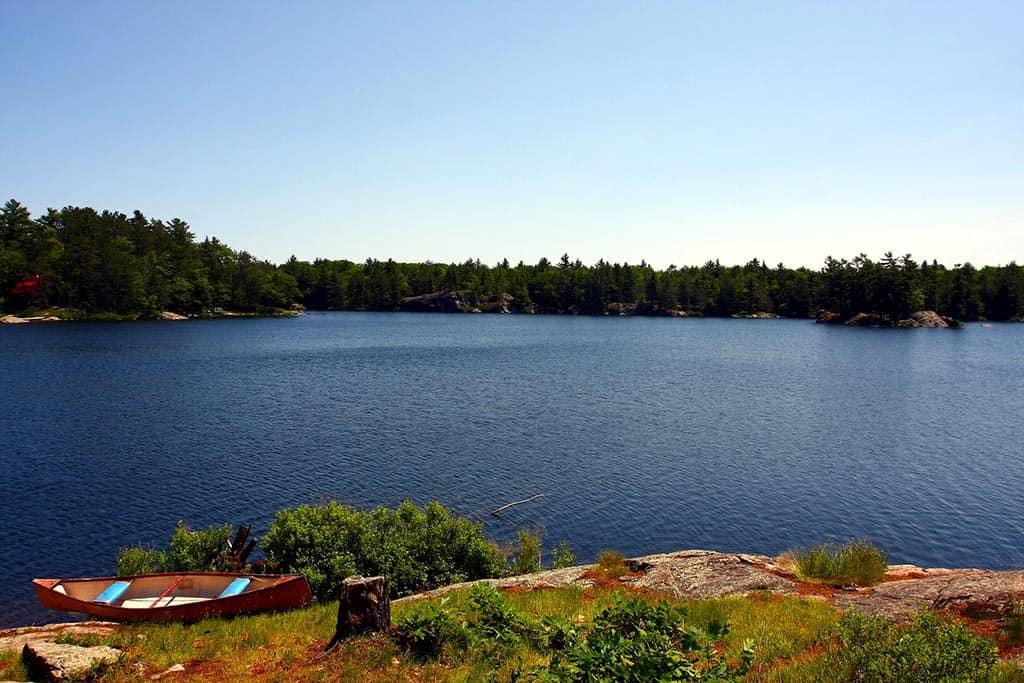 kawartha lakes buzzard lake