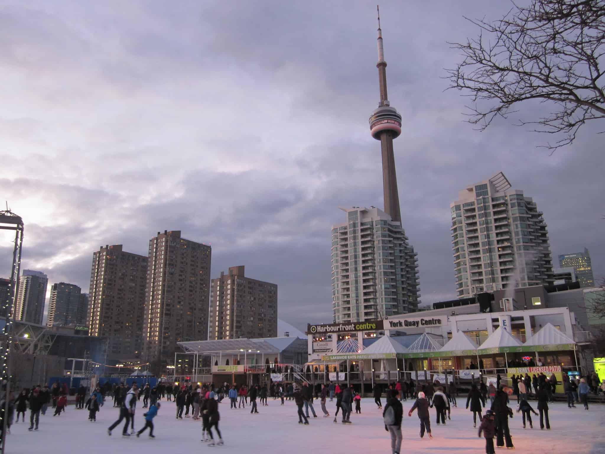 natrel rink harbourfront centre skating