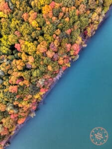 niagara glen park fall colours aerial view with diagonal cut of water and tree foliage