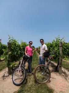 niagara on the lake winery bike tour