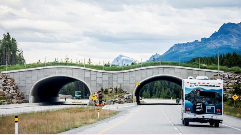 rv rentals in ontario driving to banff national park