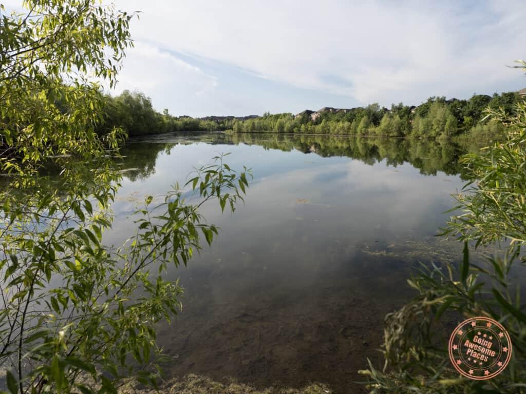 golden forest pond on peter rupert walking trail in vaughan park