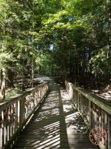 maple nature reserve bridge trail