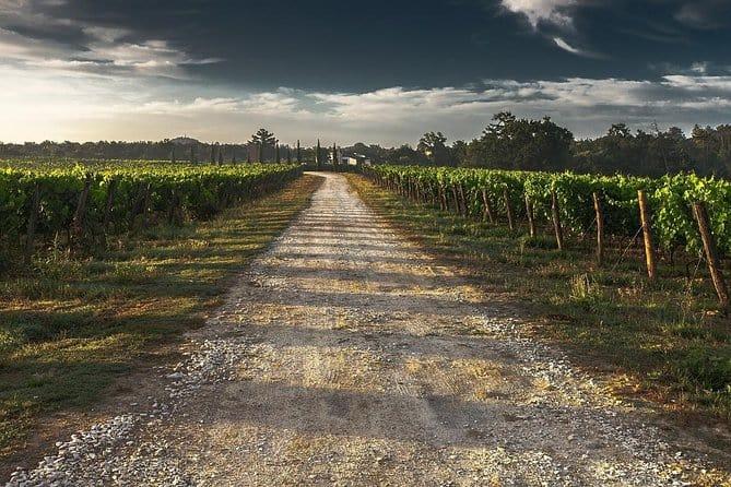 private winery tour niagara escarpment