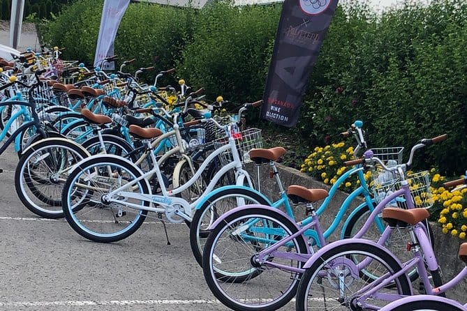 vine and dine bicycle wine tour