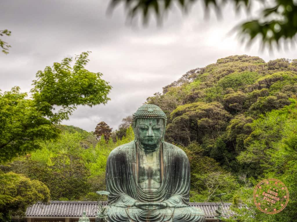 the great buddha kamakura day trip from tokyo itinerary