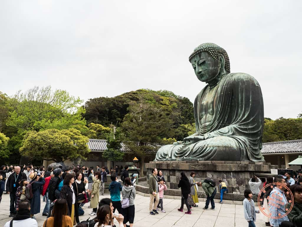 kotokuin temple with great buddha of kamakura day trip itinerary