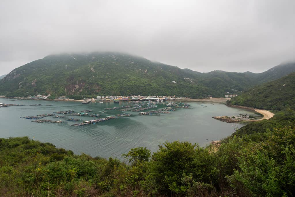 lush island greenery and fishing village from lamma island hiking trail