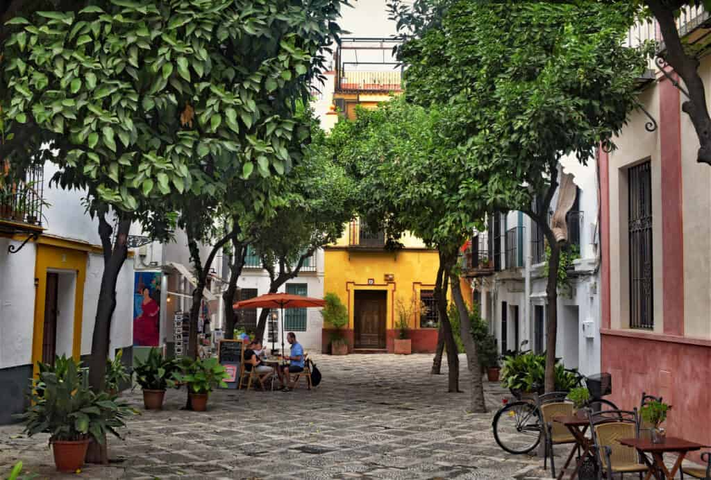 A tree lined courtyard in the Barrio Santa Cruz neighborhood in Seville, Spain