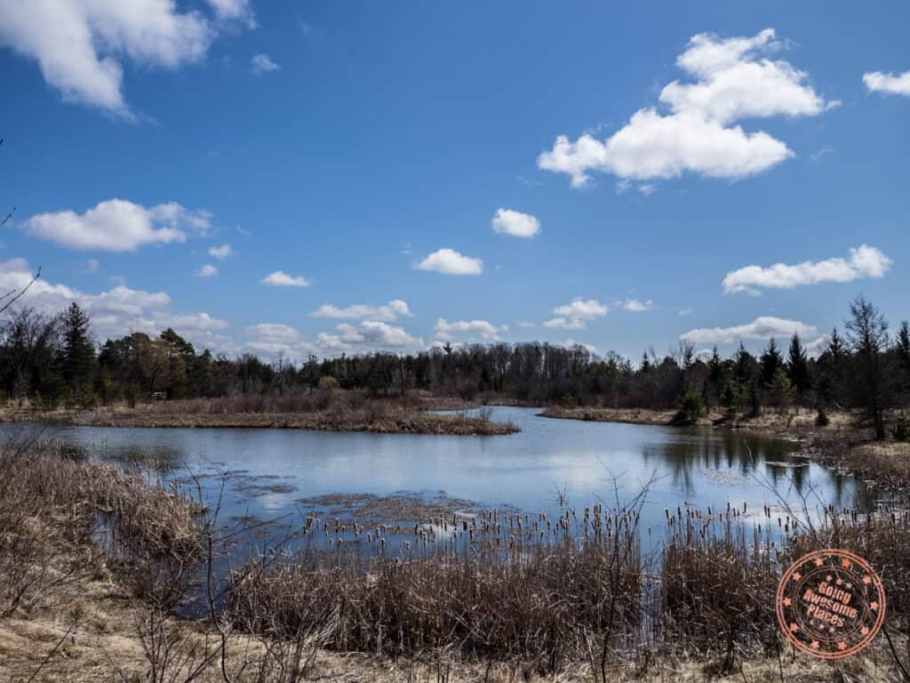 phyllis rawlinson park pond hiking trail in richmond hill