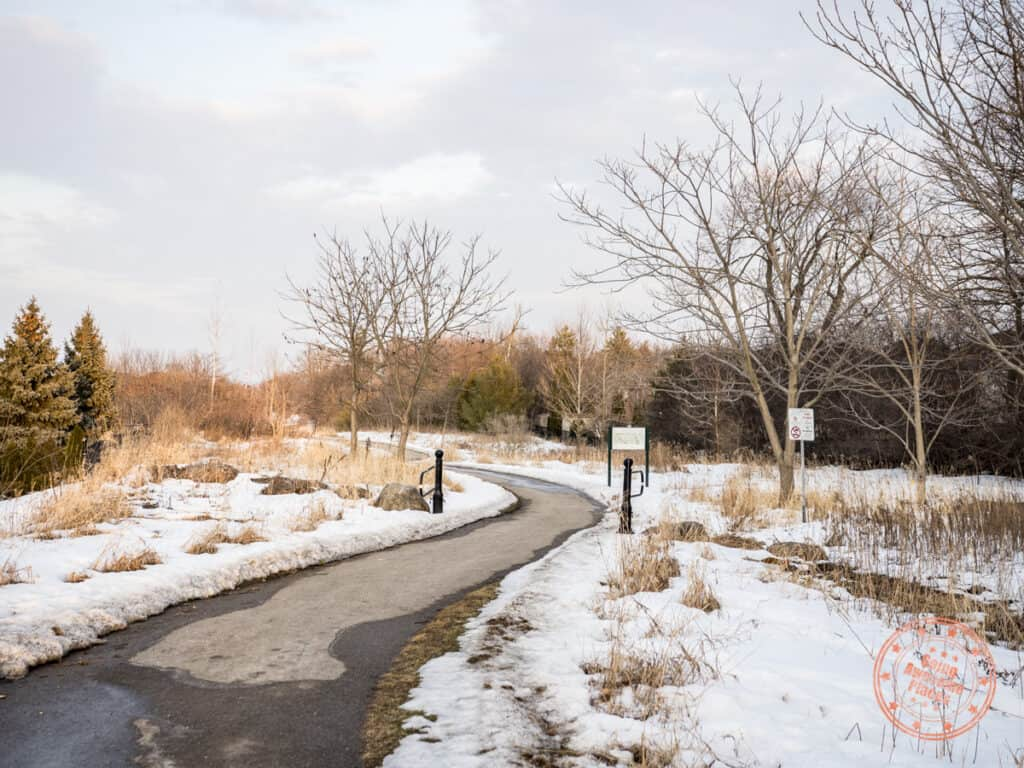 trans richmond trail paved path in the winter