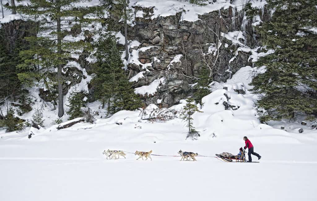 winterdance dogsled tours for a winter getaway in ontario