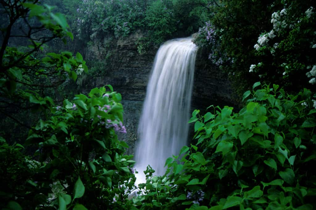 hamilton borers waterfall in the summer