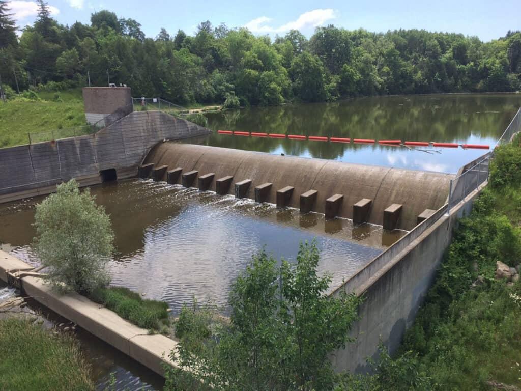 milne dam park in markham