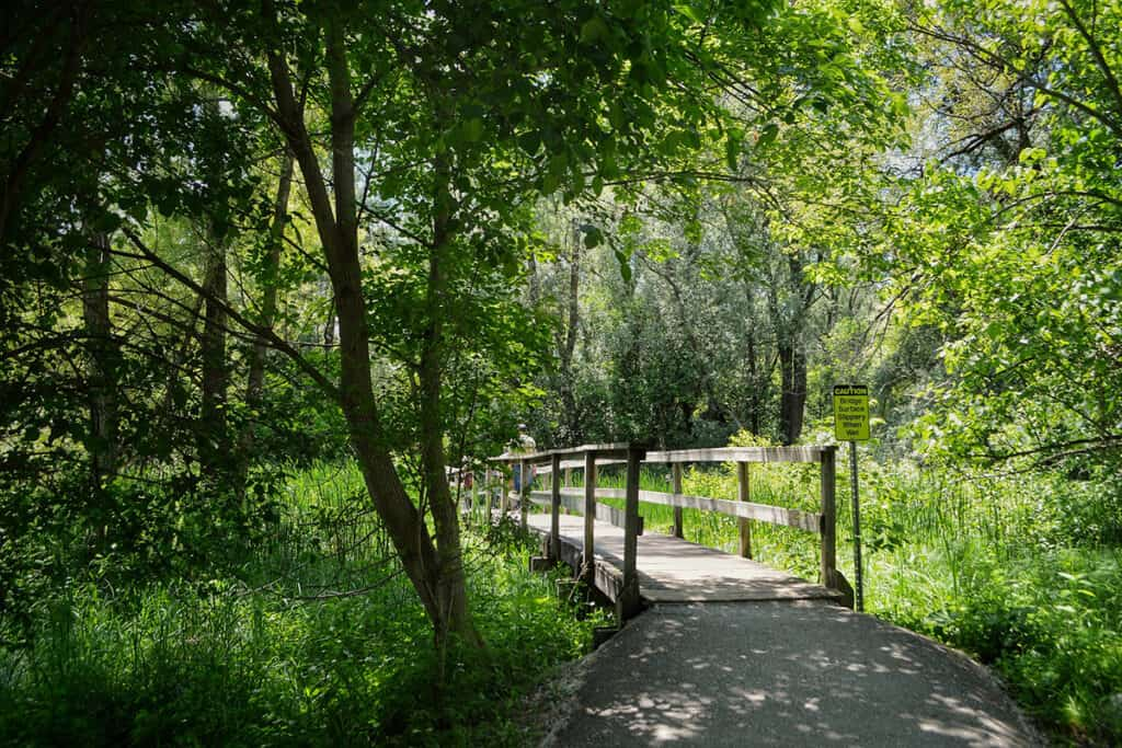 toogood pond park in the city of markham
