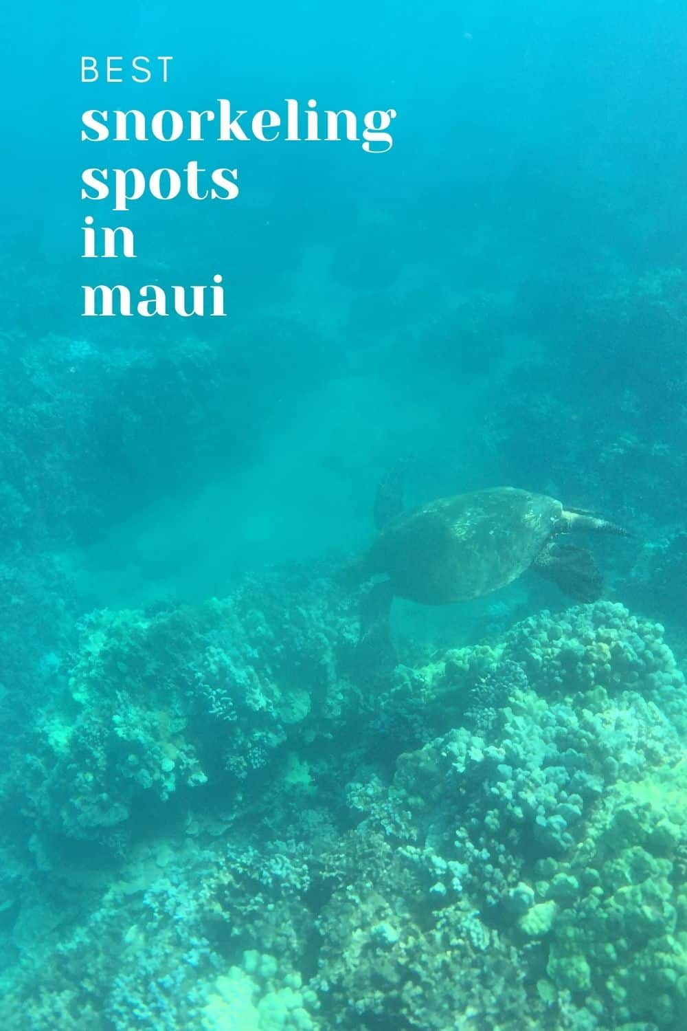 Best Snorkeling in Maui - Self-Guided and Boat Tours [2021]
