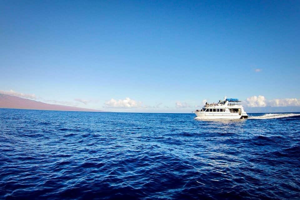 lahaina to lanai dolphin snorkel boat tour