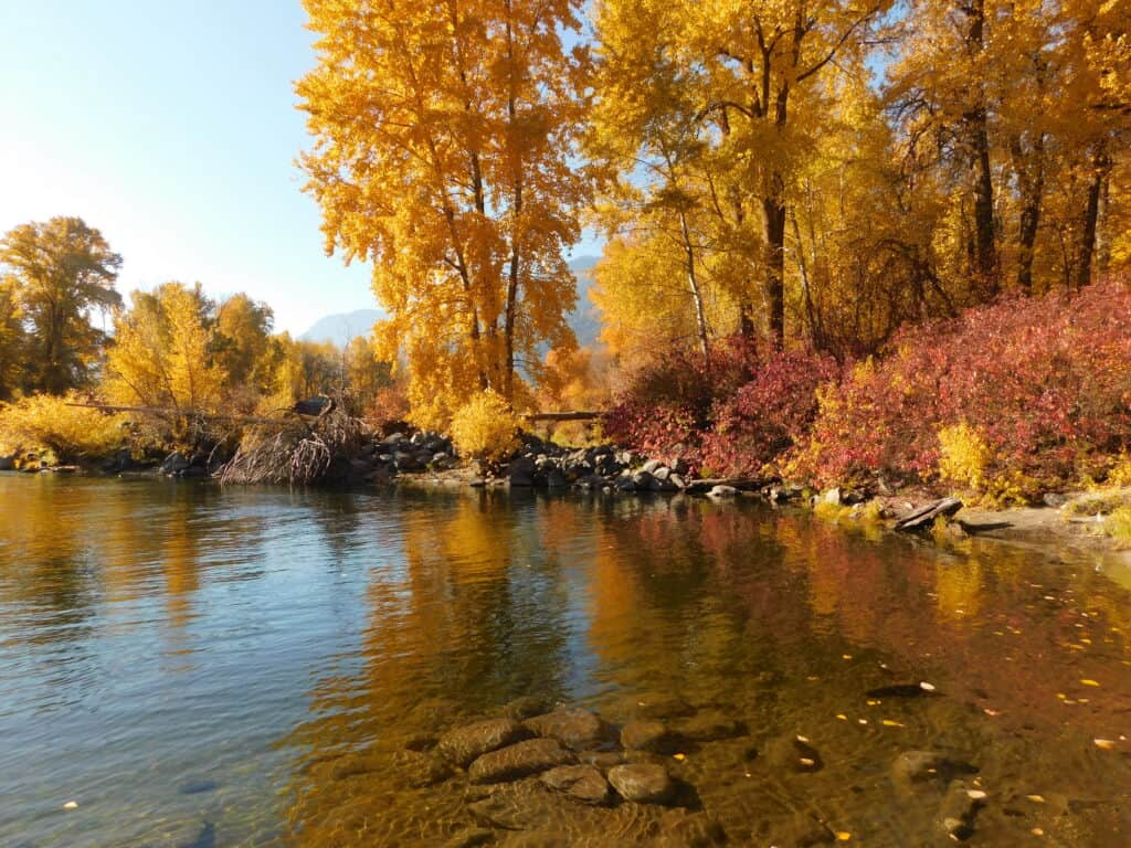 fall colours at waterfront park in leavenworth washington