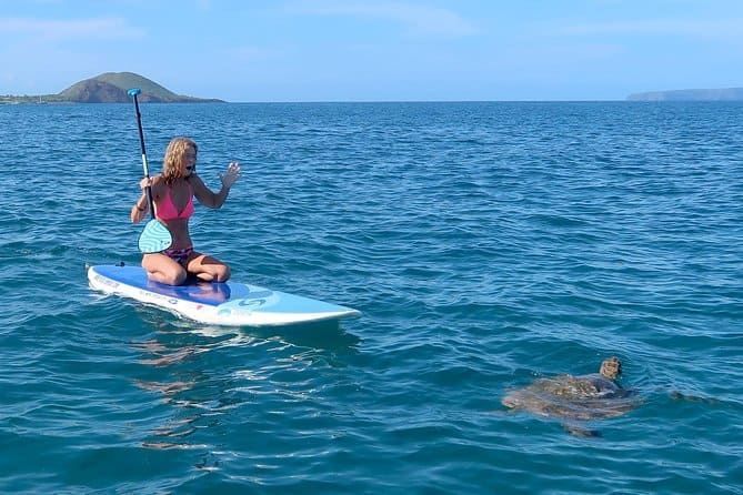 stand-up paddleboard and snorkel tour of turtle town in maui