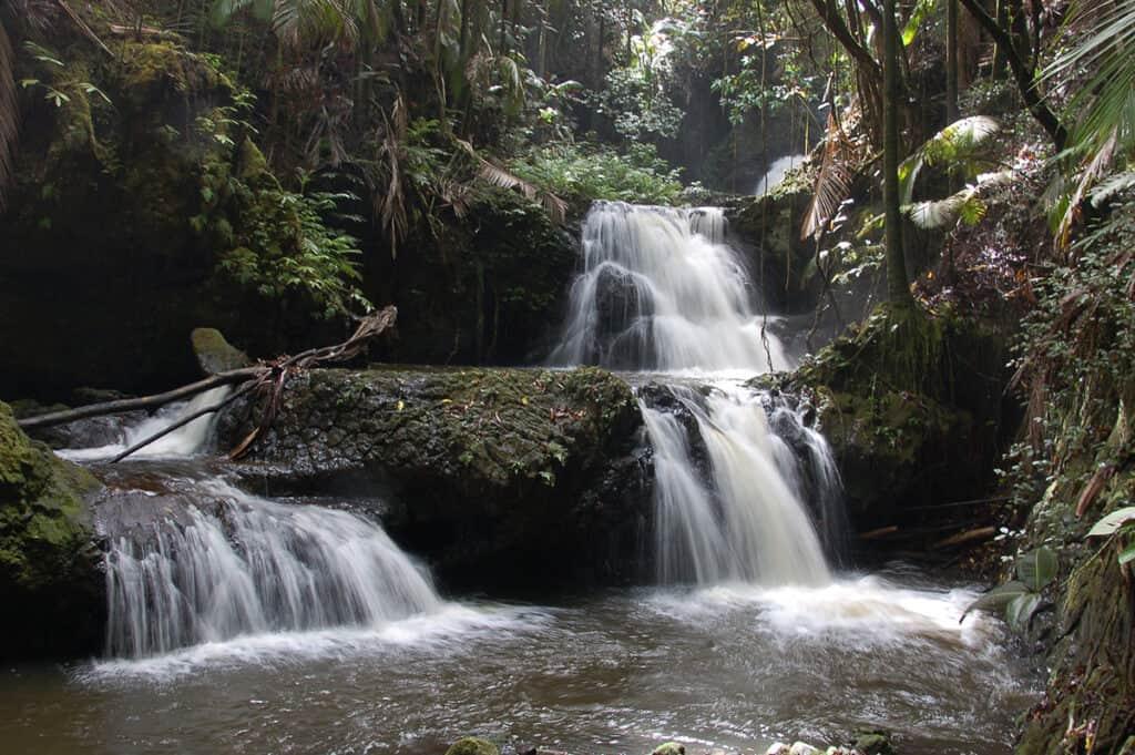 hawaii tropical bioreserve and garden onomea waterfalls