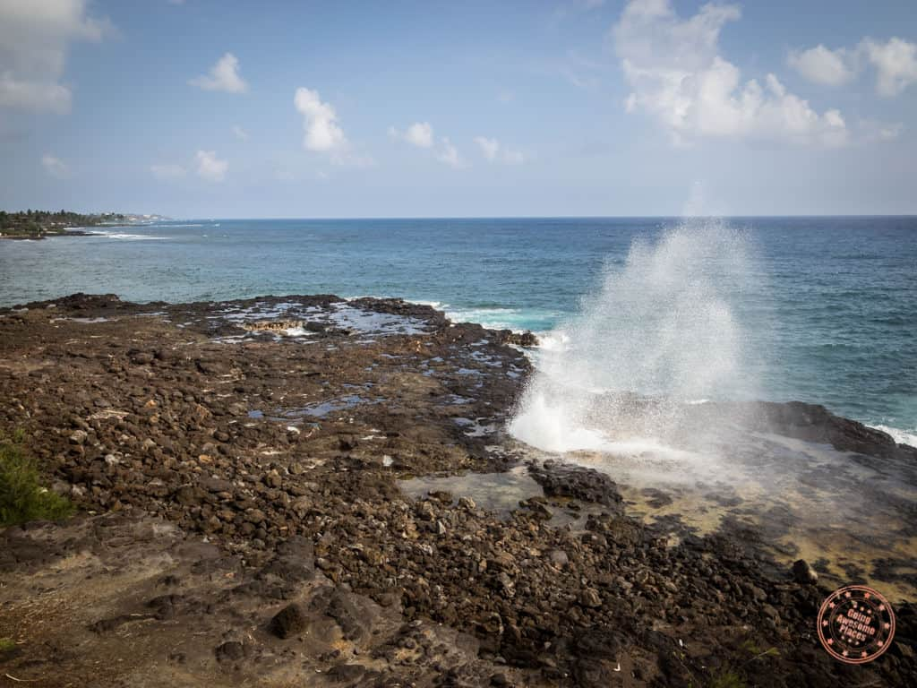 things to do in kauai include spouting horn in the south shore