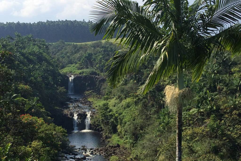 umauma falls in kona big island hawaii cascades that you have to see