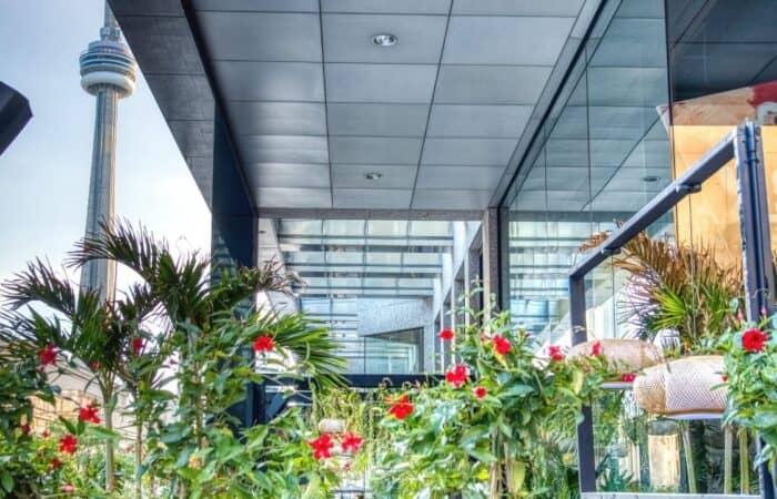 best toronto patios featured