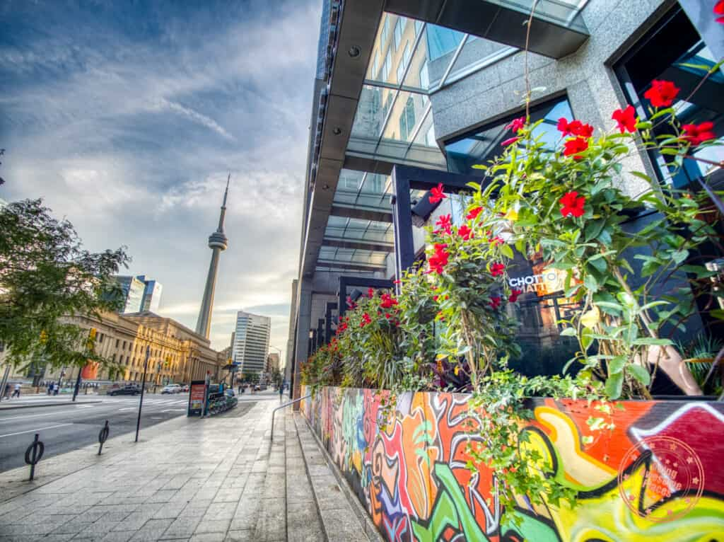best toronto patios with view of the CN tower downtown