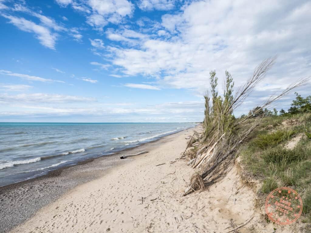 pinery provincial park dunes beach